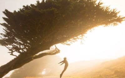 Il ruolo e la forza della motivazione
